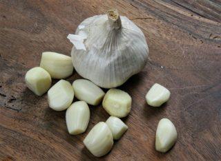 pestovanie cesnaku